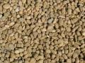 Where to rent GRAVEL, PEA HALF SCOOP in Camarillo CA